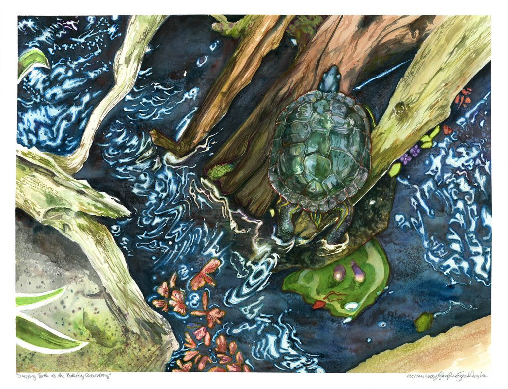 turtle sitting on driftwood watercolour painting